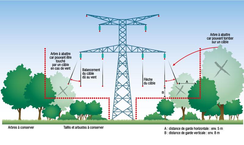 Coups préventives à proximité des installation électique d'Hydro Québec de moyenne et basse tension.